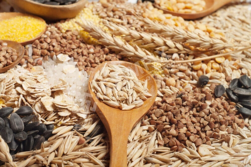 Staple Food and Legumes