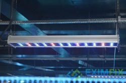 Led Lighting Fixtures and Systems